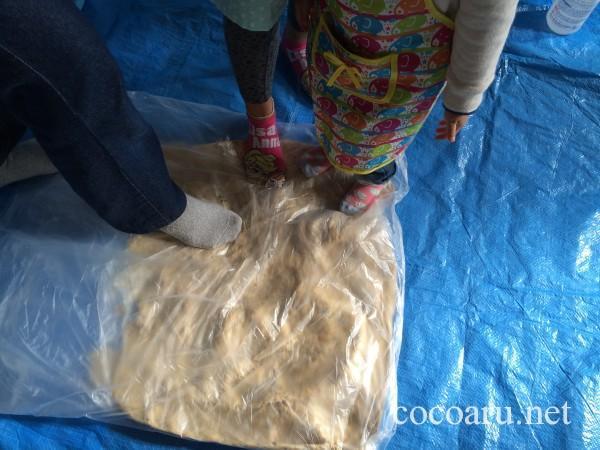 味噌の作り方・ビニールに入れた大豆を踏みまくり
