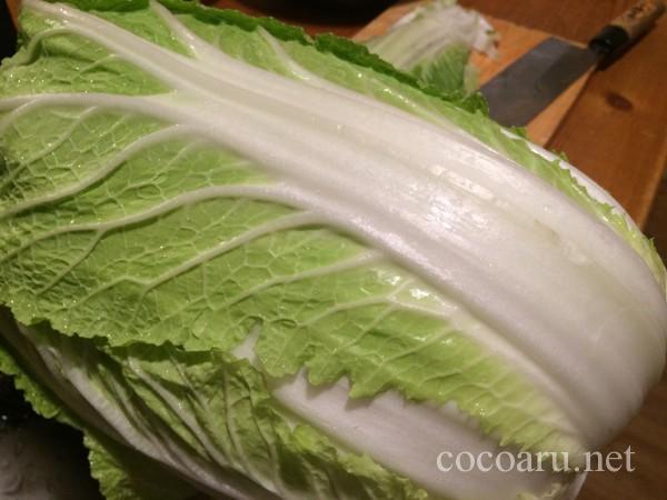 乳酸発酵(白菜の漬け物)01