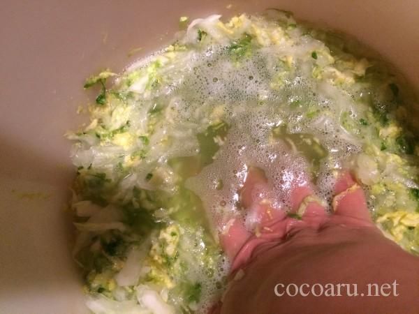 乳酸発酵(白菜の漬け物)08