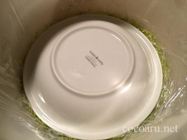 乳酸発酵(白菜の漬け物)12