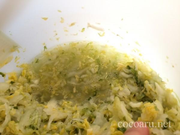 乳酸発酵(白菜の漬け物3日目)15