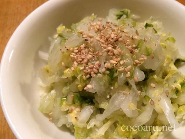 乳酸発酵(白菜の漬け物3日目)16