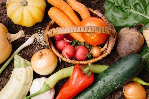 ぬか漬け 野菜 ランキング01