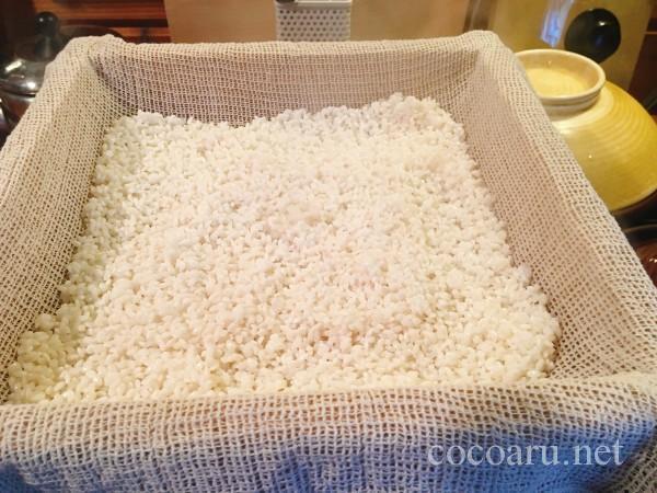 米麹の作り方!ヨーグルティア編:お米をはる