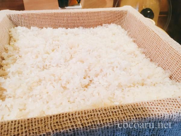 米麹の作り方!ヨーグルティア編:蒸米の出来上がり