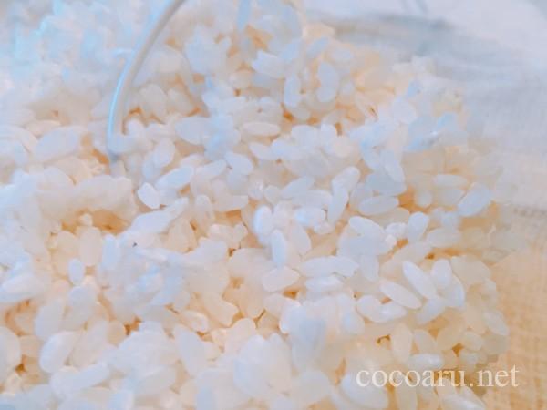 米麹の作り方!ヨーグルティア編:包み込みから約24時間後2回目の切り返し 麹に斑点がついてきた