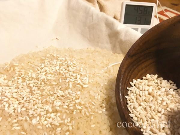 米麹 増やし方