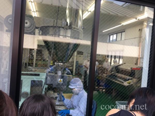 カクキュー八丁味噌 工場見学(工場の様子を外から)